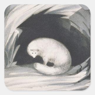 Fox arctique, de 'récit d'un deuxième voyage sticker carré
