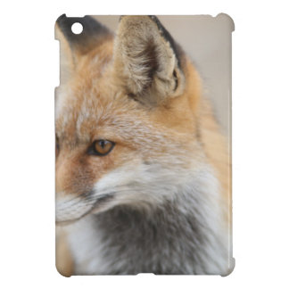 fox cover for the iPad mini