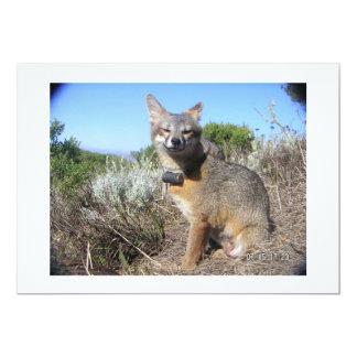 Fox d'île femelle de la Manche Carton D'invitation 12,7 Cm X 17,78 Cm