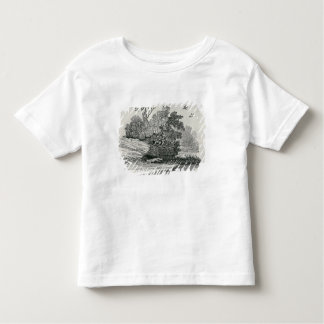 Fox escaping,'The General History of Tshirt