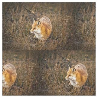 fox fabric, woodland fabric, quilting panels fabric