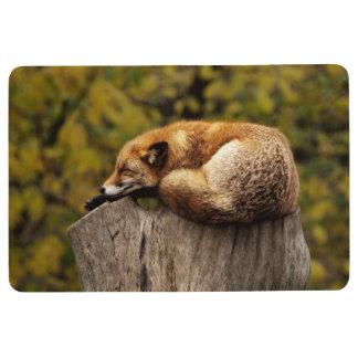fox floor mat, foxy mat, sleeping fox floor mat