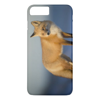 Fox iPhone Case - Customize to fit Most iPhones
