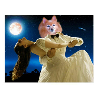 Fox Is A Dancing Fool Postcard
