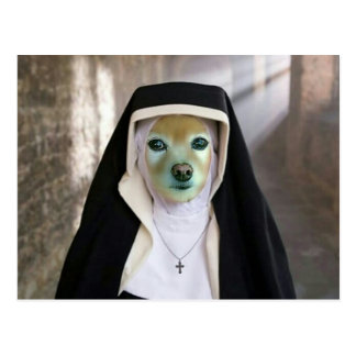 Fox Is Another Nun Postcard