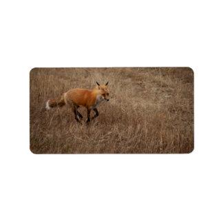 Fox on the Run Label
