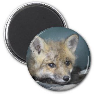 Fox Phone Case Magnet