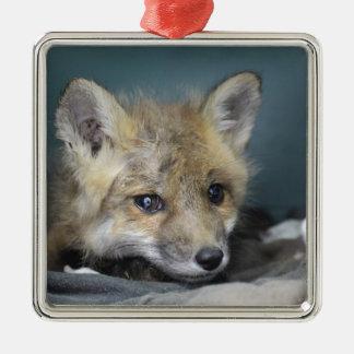Fox Phone Case Metal Ornament