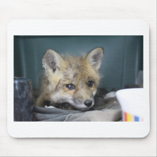 Fox Phone Case Mouse Pad