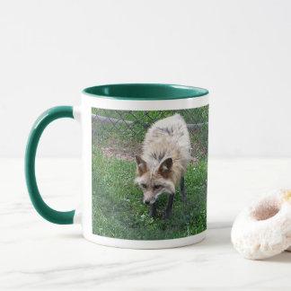 Fox Photo Mug