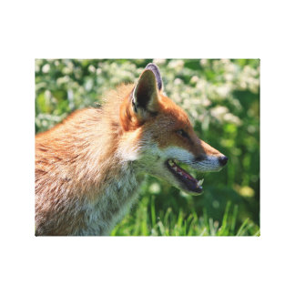fox poster, foxy decor, fox cub gifts canvas print