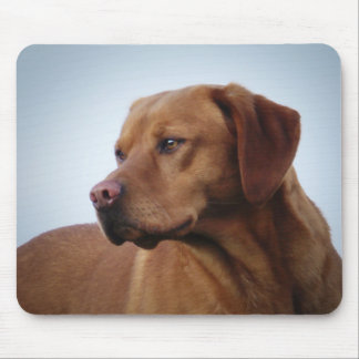 Fox Red Labrador Gundog Mouse Pad