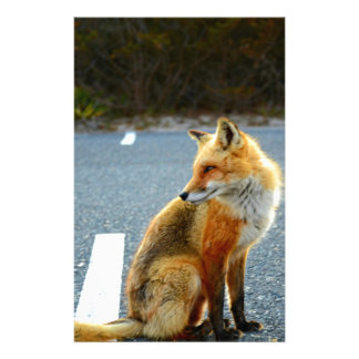 Fox Side View Customized Stationery
