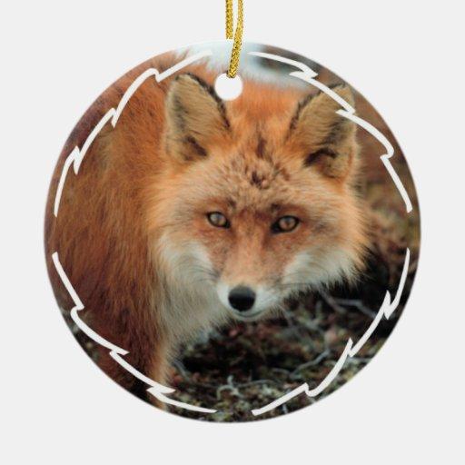 Fox Species Ornament