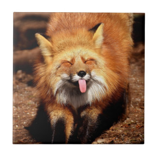 Fox Sticking It's Tongue Out Tile