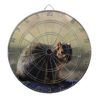 Fox Tail Squirrel  DART BOARD