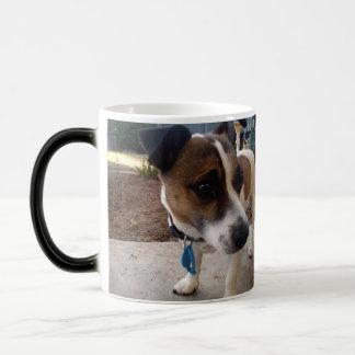 Fox Terrier Attraction, Magic Morph Coffee Mug