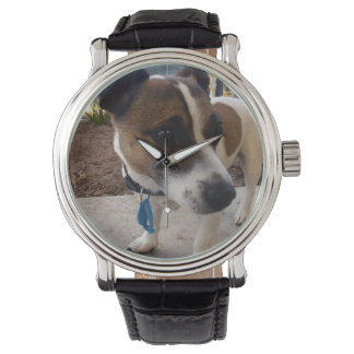 Fox Terrier, Attraction, Mens Leather Wrist Watch. Wrist Watch
