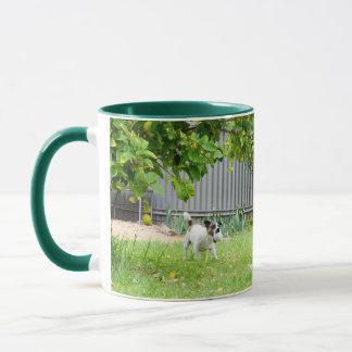 Fox Terrier, Funny Scare Face, Green Coffee Mug