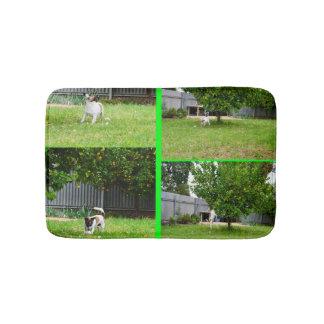 Fox Terrier Photo Collage, Small Memory Bath Mat