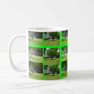 Fox Terrier Photo Collage White Coffee Mug