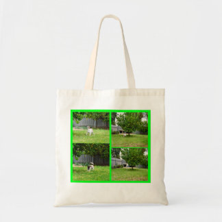 Fox Terrier Playing In The Garden, Tote Bag