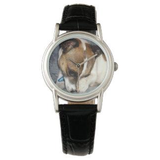 Fox Terrier Shy Face, Ladies Watch