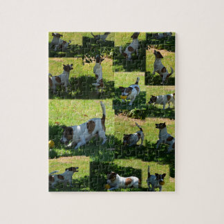 Fox Terrier, The Hard Day, Jigsaw Puzzle