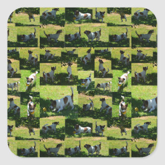 Fox Terrier, The Hard Day, Square Sticker