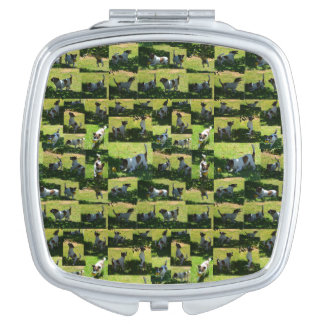 Fox Terrier The Long Hard Day Photo Collage, Compact Mirrors