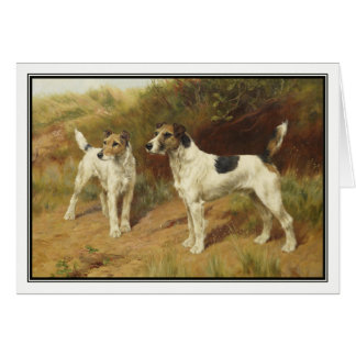 Fox Terriers by Thomas Blinks Card
