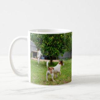 Fox Terriers Playtime, White Coffee Mug