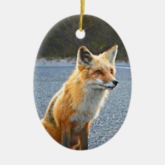 Fox Up Close Ceramic Oval Ornament