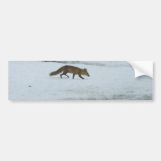 Fox Walking in Snow Bumper Sticker