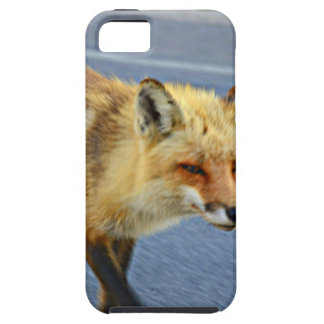 Fox Walking iPhone 5 Covers