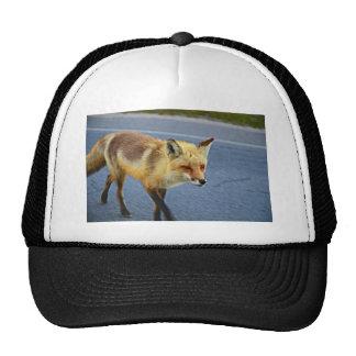 Fox Walking Trucker Hat