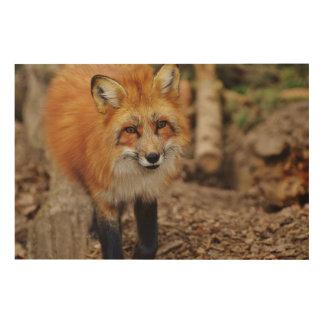 Fox Wood Wall Art