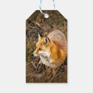 fox wrapping paper, woodland gift wrap pack of gift tags