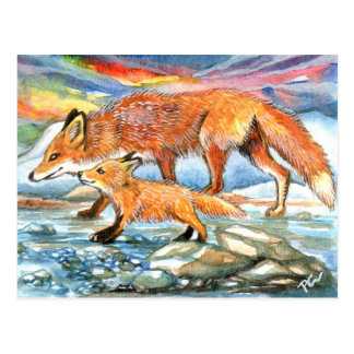 Foxes Walking by Riverbank Postcard