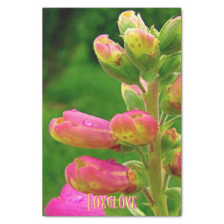 Foxglove Buds-Tissue Wrapping Paper