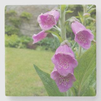 Foxglove Flower Coasters Stone Coaster