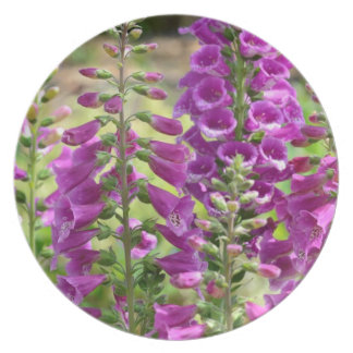 Foxglove Flowers Party Plate