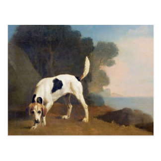 Foxhound on the Scent, c.1760 (oil on paper laid o Postcard