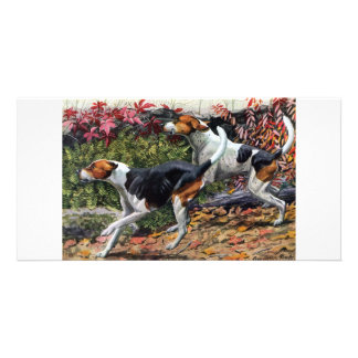 Foxhounds Photo Greeting Card