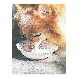 Fox's Birthday Ice Cream Postcard