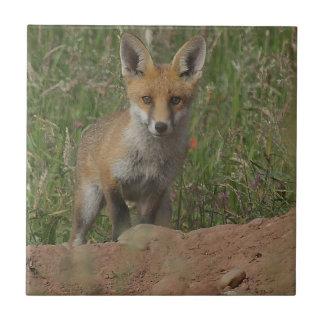 Foxy Tile