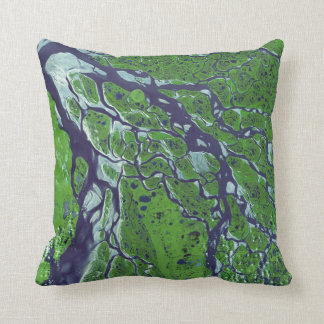 Fractal Delta of River Lena Throw Pillow