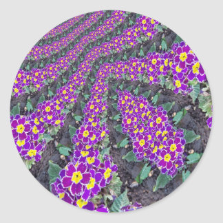 Fractal Flowers Classic Round Sticker