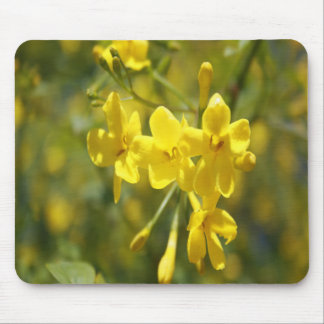 Fragrant Yellow Flowers Of Carolina Jasmine Mouse Pad