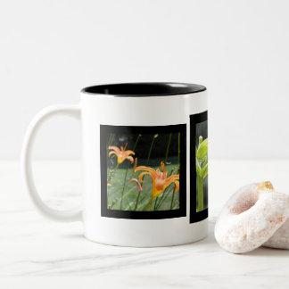 Frame mug